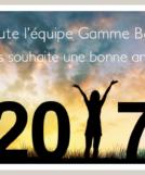 voeux-2017-gammebaie
